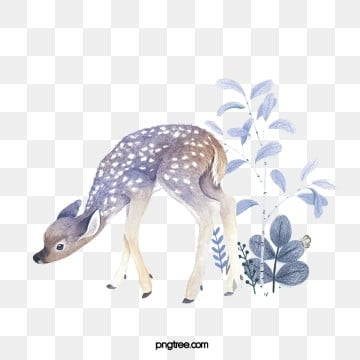 deer hand drawn botanical animal elements, Deer, Cartoon, Animal PNG and PSD