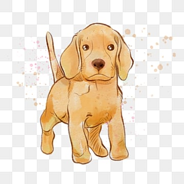 yellow golden retriever dog splatters watercolor element, Yellow, Golden Hair, Dog PNG and PSD