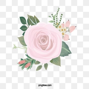 flowers pink flowers  stamens  leaves  elements, Flowers And Plants, Flower, Flowers PNG and PSD