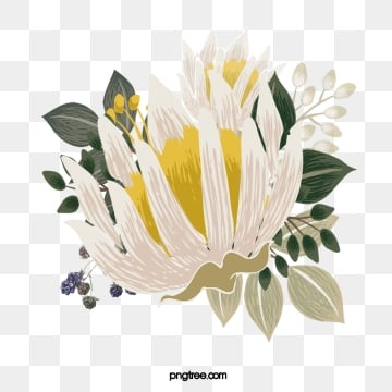 hand drawn floral flowers leaves elements, Flowers And Plants, Flower, Flowers PNG and PSD