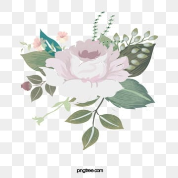hand painted white pale pink flower flowers flowers botanical elements, Stamen, Flowers, Flower PNG and PSD