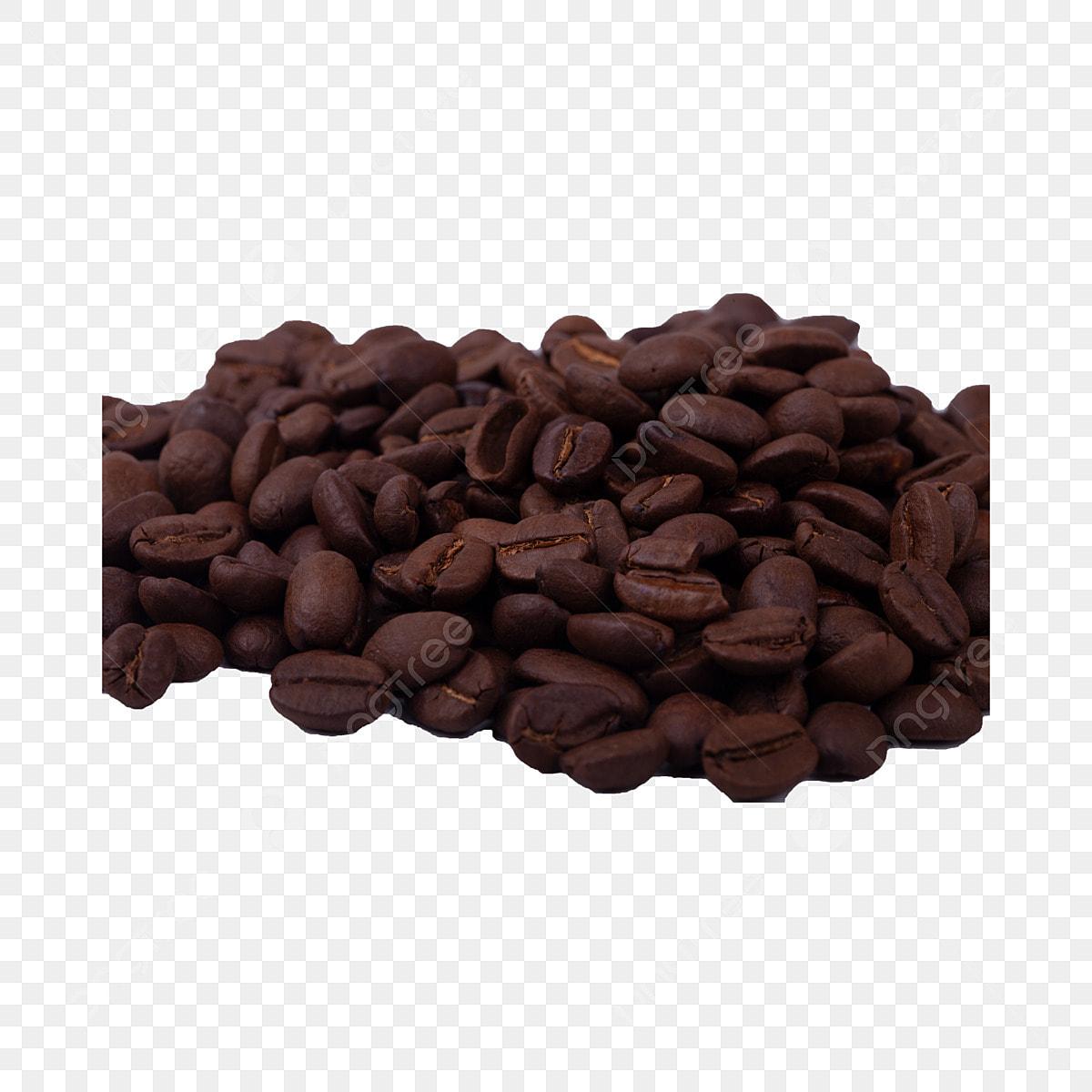 gambar biji kopi png muat turun percuma biji kopi realisme musim sejuk png dan psd untuk muat turun percuma pngtree