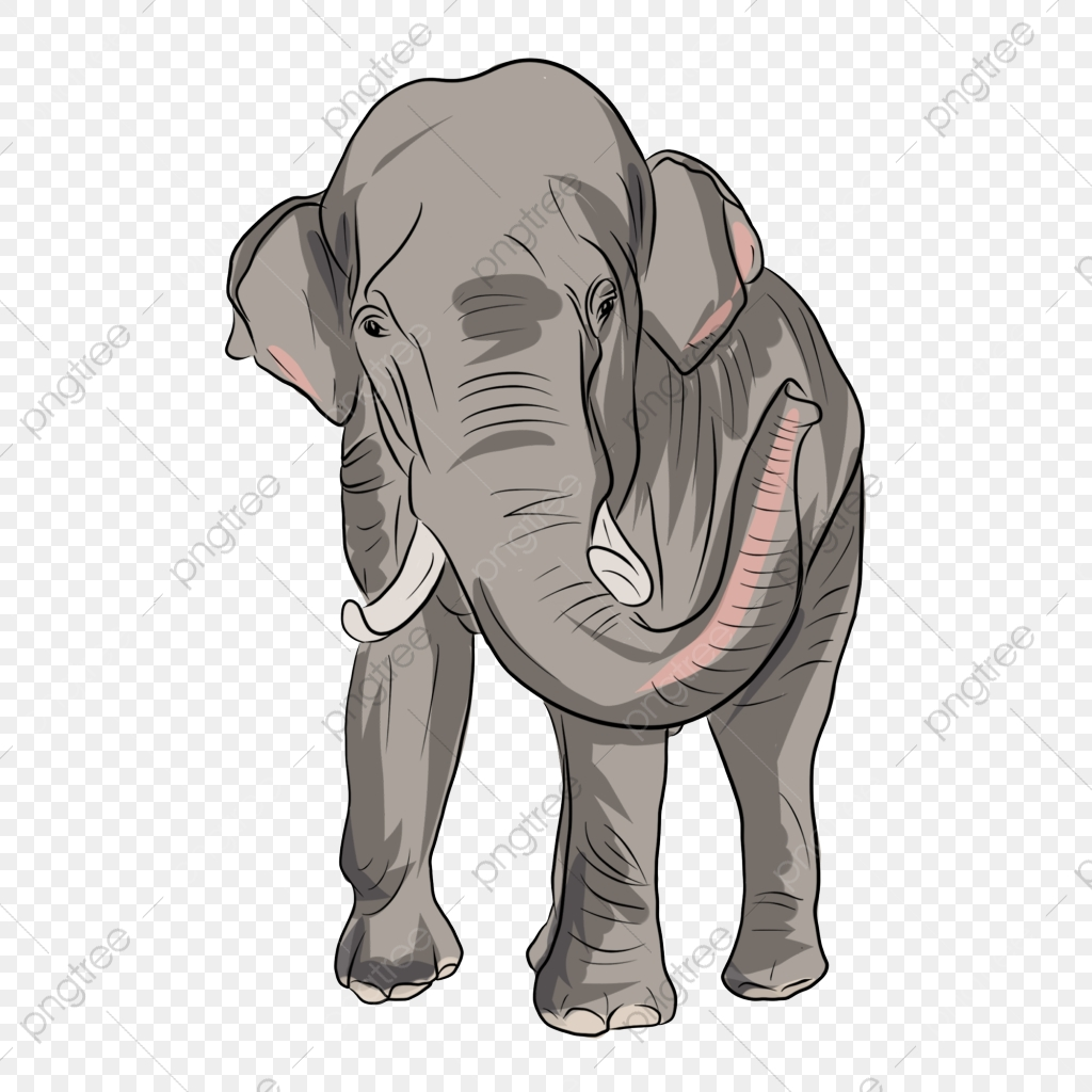 Gray Cartoon Elephant Png Material Design Elephant Clipart Animal Cartoon Png Transparent Clipart Image And Psd File For Free Download Over 411 elephant png images are found on vippng. https pngtree com freepng gray cartoon elephant png material design 4389607 html