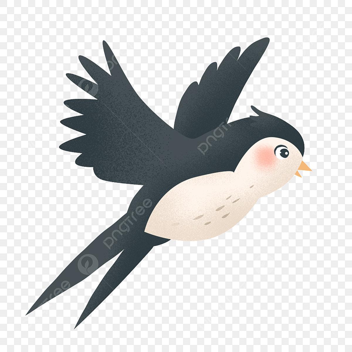 Paling Keren 15+ Gambar Burung Layang Layang - Gani Gambar