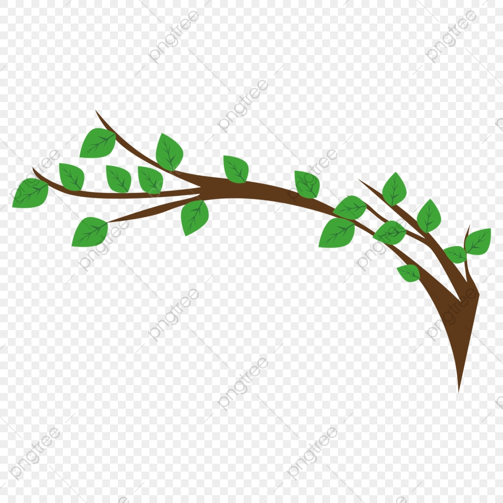 26+ Branch Cartoon Picture PNG