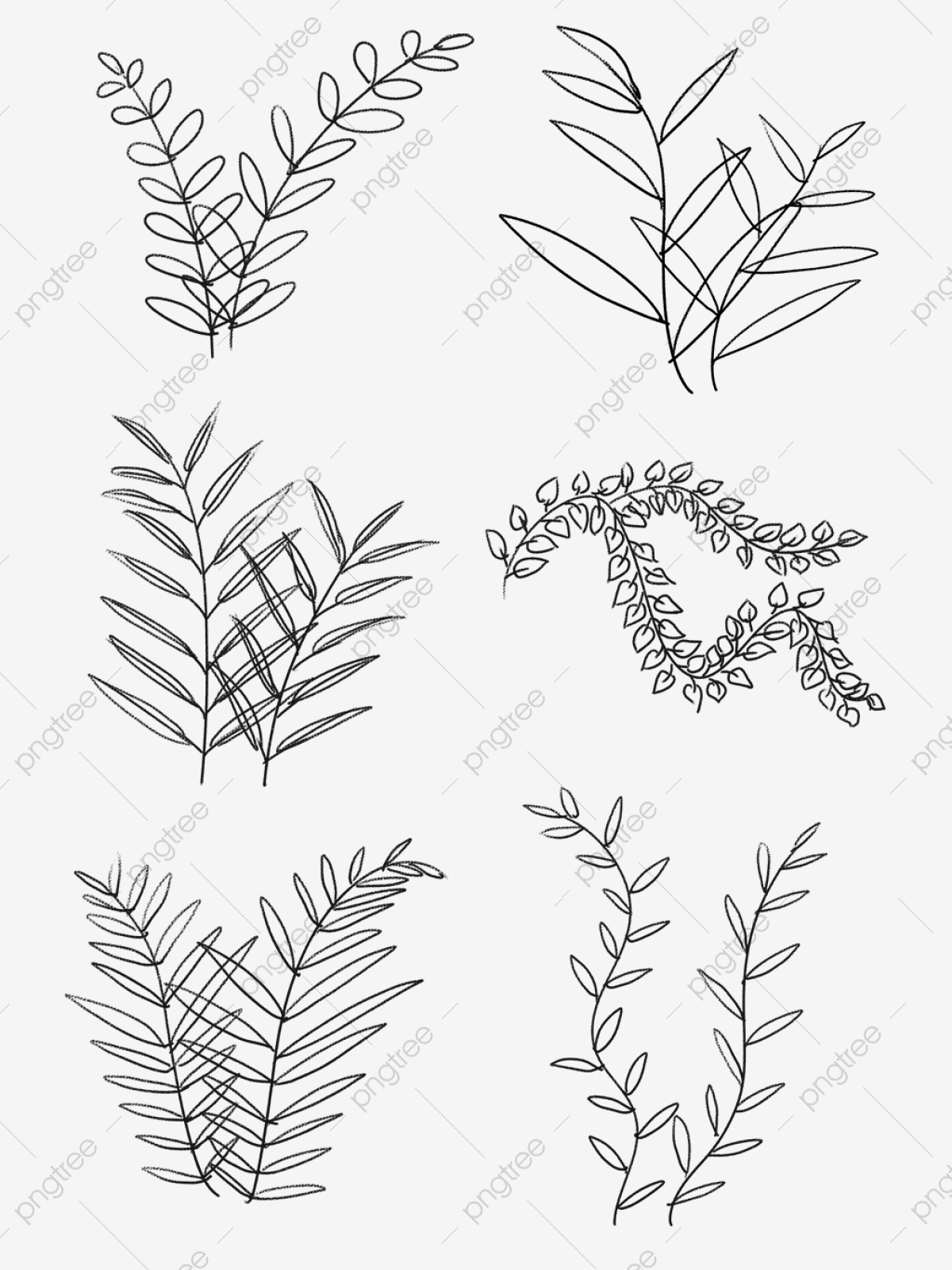 Drawing Plant Png Images Vector And Psd Files Free Download On Pngtree