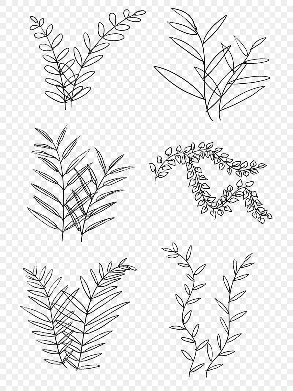 Peint à La Main Noir Et Blanc Dessin Au Trait Plantes Peint