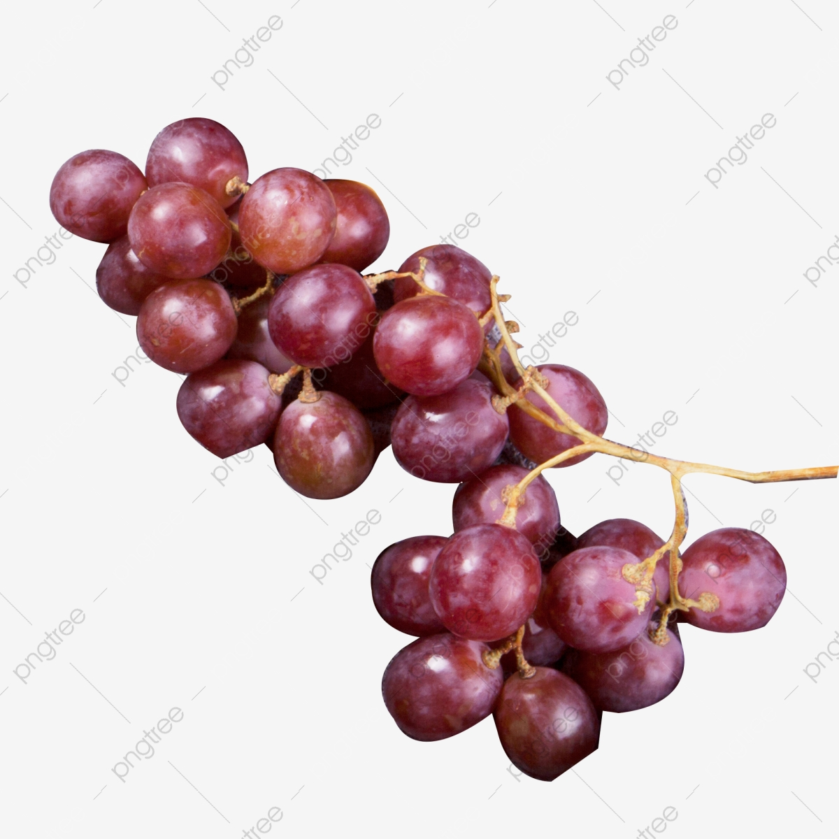 Red Grape PNG Clip Art Image | Gallery Yopriceville - High-Quality Images  and Transparent PNG Free Clipart