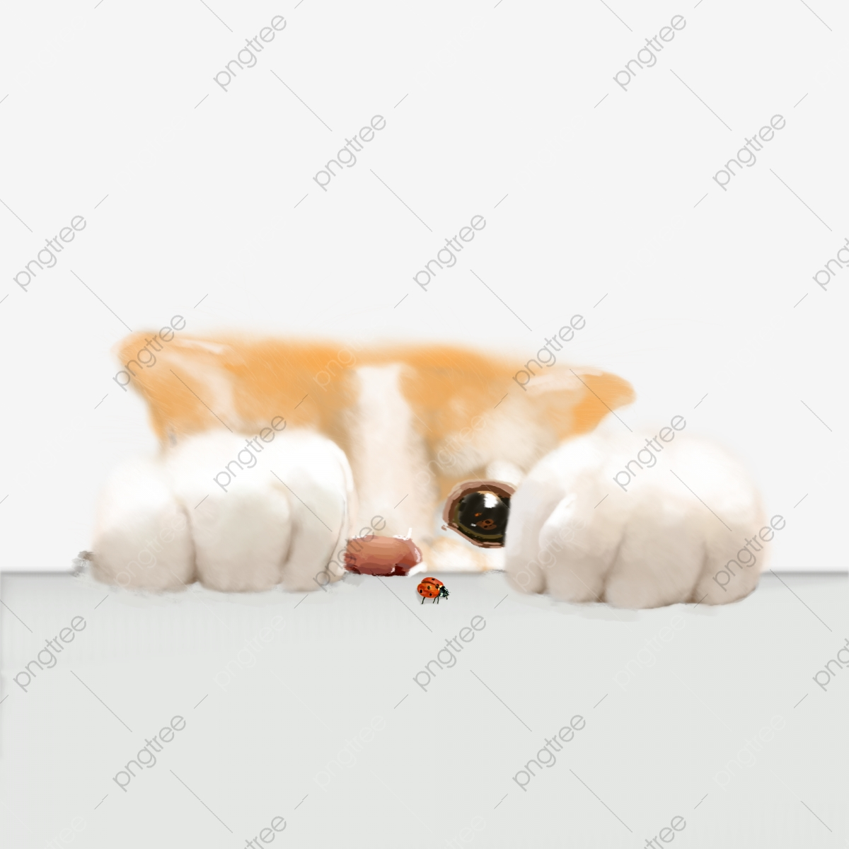 Simulation Cat Cute Pet Download Simulation Cat Cat Cute Cat Png Transparent Clipart Image And Psd File For Free Download