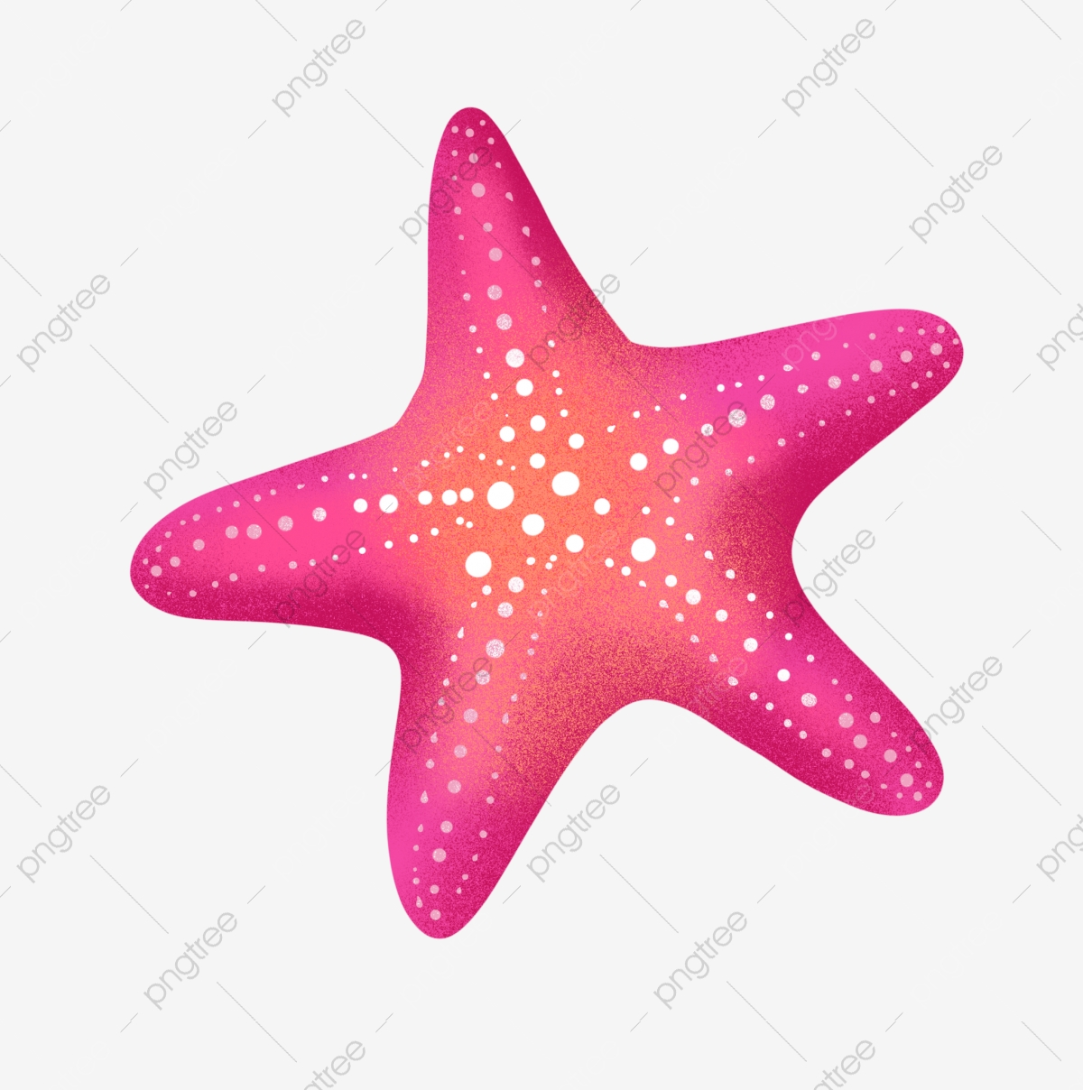 Starfish Clipart Png Images Vector And Psd Files Free Download On Pngtree