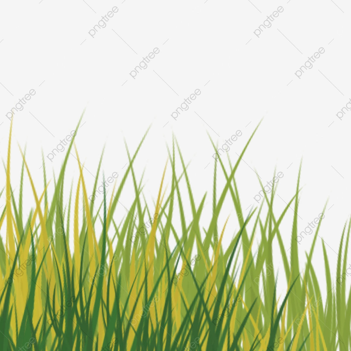 Cartoon Green Grass Png Download Grass Green Grass Spring Grass Png Transparent Clipart Image And Psd File For Free Download
