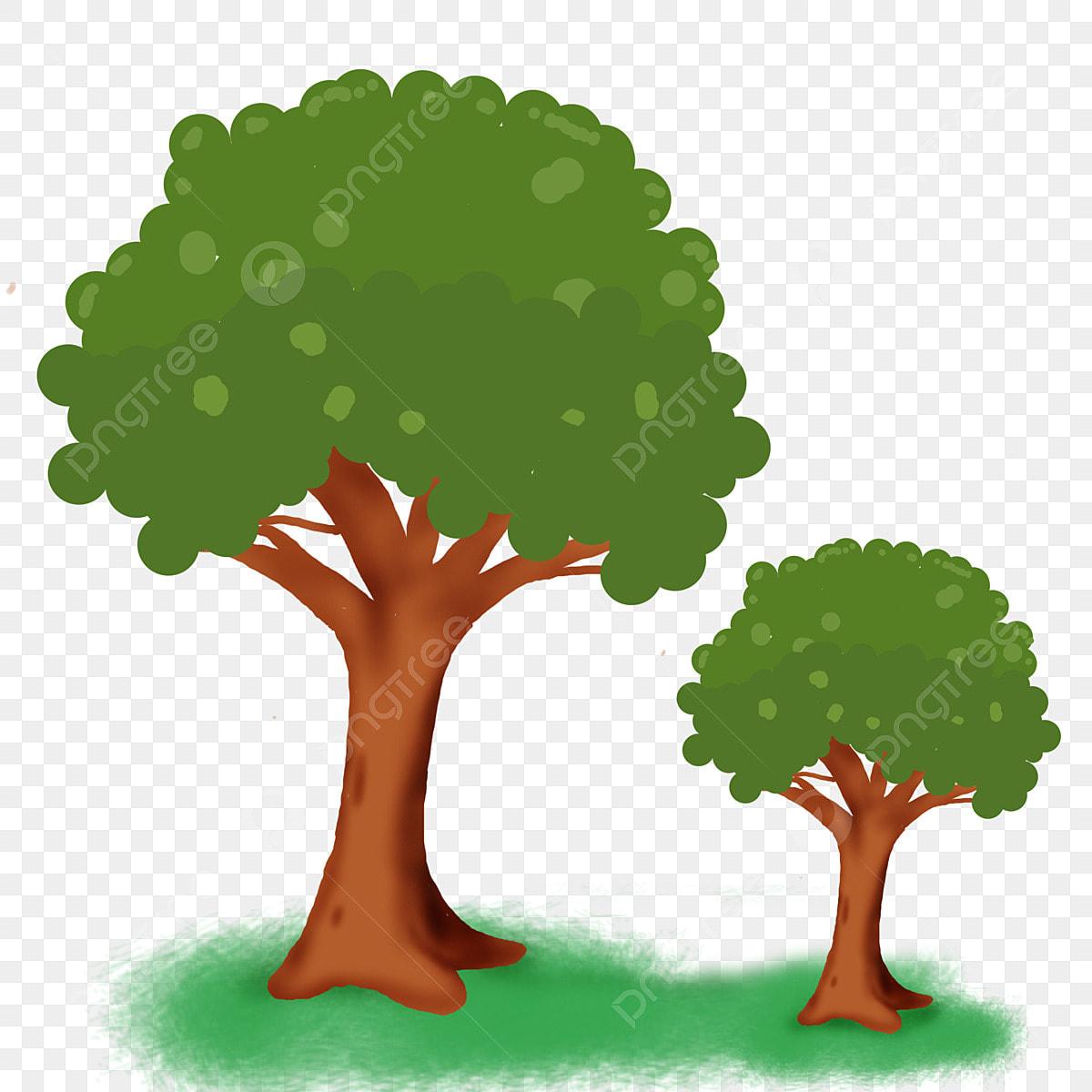 عرض حول الشجرة Ppt - Shajara