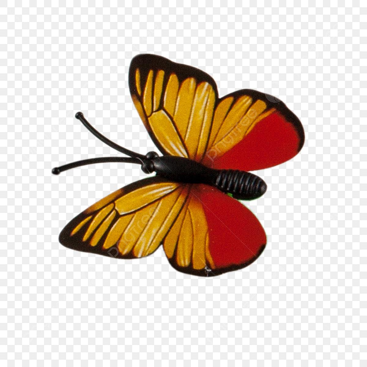 Printemps Papillon Couleur Papillon Papillon Petit Papillon Beau Telechargement De Dessin Anime Creatif Illustration De Dessin Anime Fichier Png Et Psd Pour Le Telechargement Libre