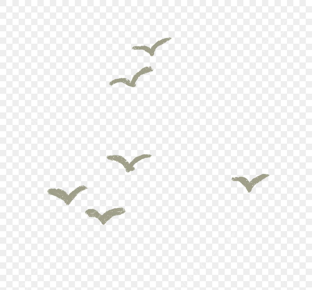 السماء جميلة الطيور طائر طائر لطيف جميل Png وملف Psd للتحميل مجانا