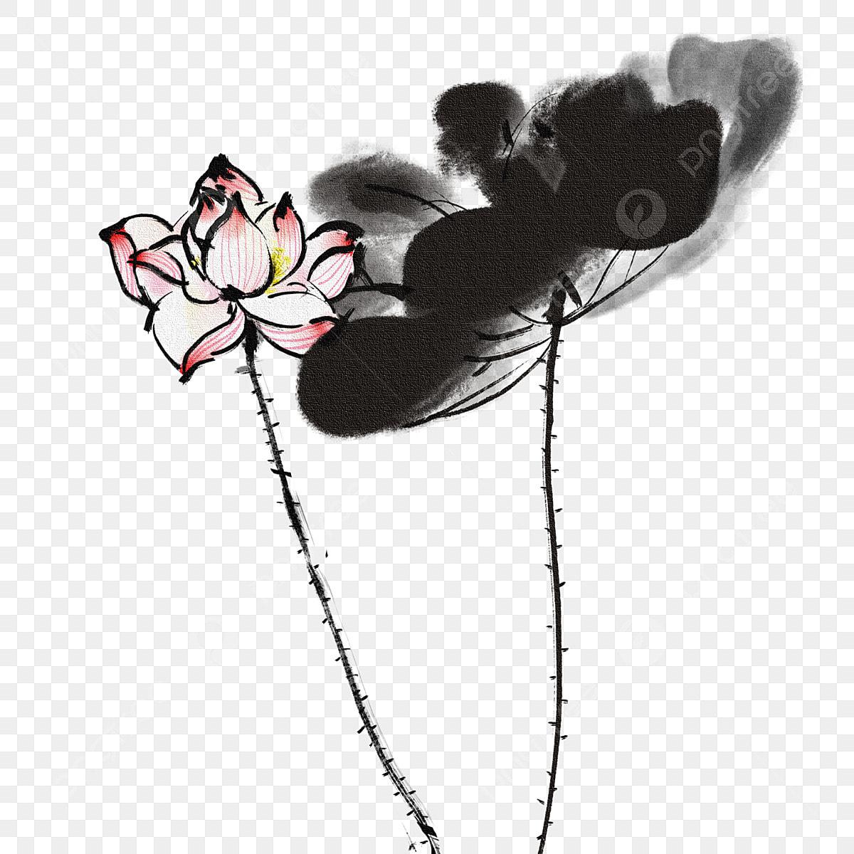 Feuille De Lotus Noire Fleur De Lotus Rose Fleur De Lotus D