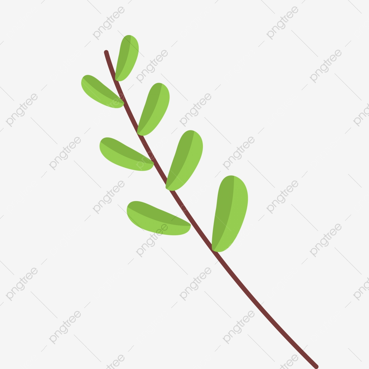 Branches D Arbres De Dessin Anime Branches De Plantes Plantes De