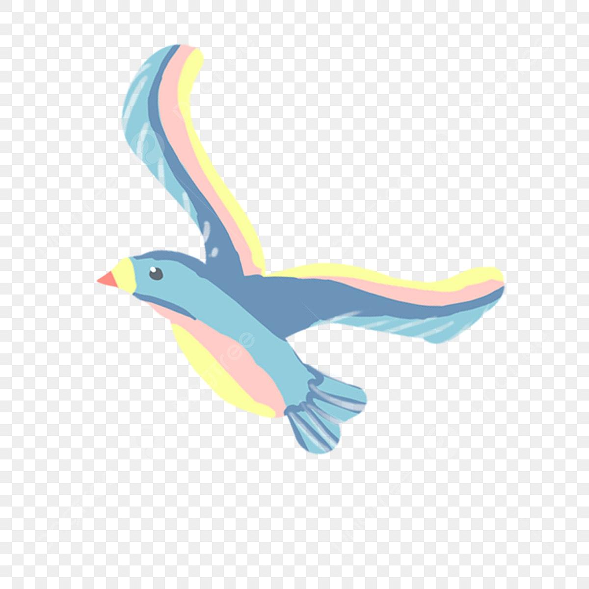 Kartun Binatang Burung Burung Camar Burung Muat Turun