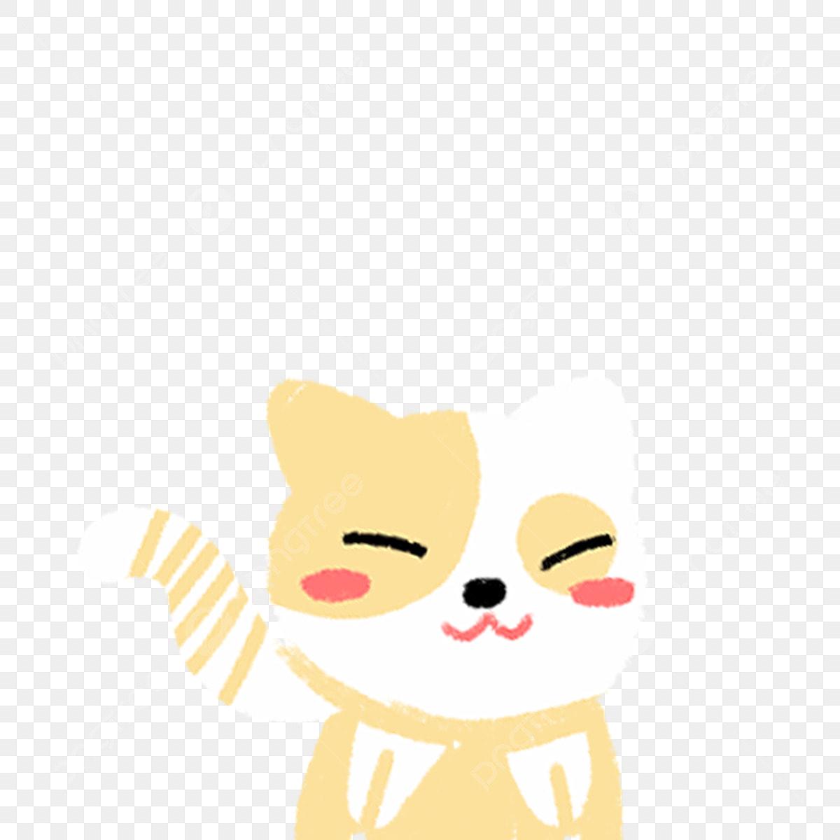 Chat Jaune Chat Pour Animaux De Compagnie Chat Mignon Animal