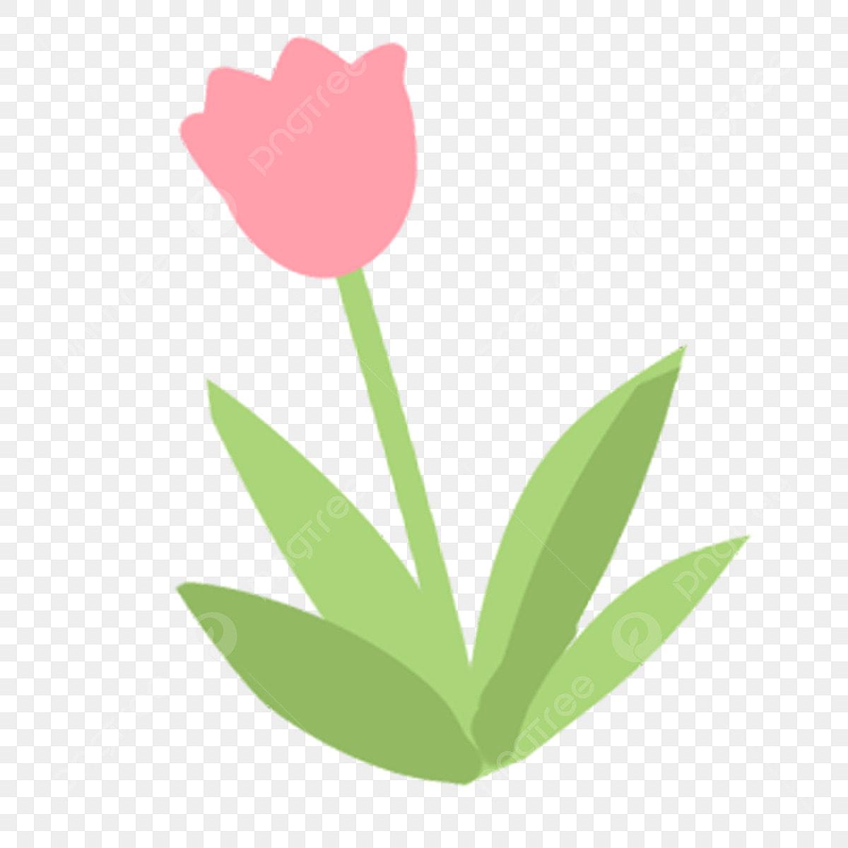 Couleur Plante Fleur Feuillage Fleur Illustration De