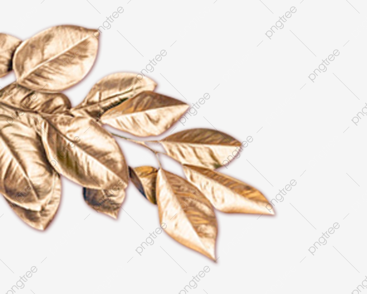 Golden Leaves Golden Leaves Plants Png Transparent Clipart Image And Psd File For Free Download