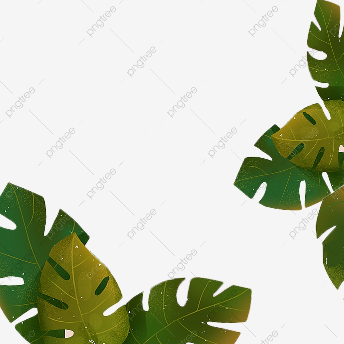 Plant Leaf Cartoon Png Material Plant Leaves Cartoon Leaves Hand Drawn Leaves Png Transparent Clipart Image And Psd File For Free Download