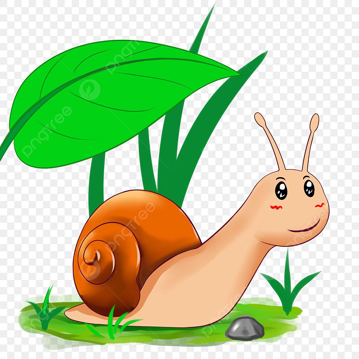 Escargot De Printemps Escargot Mignon Escargot De Dessin Anime Feuille Verte Escargot Clipart Escargot De Printemps Escargot Mignon Fichier Png Et Psd Pour Le Telechargement Libre