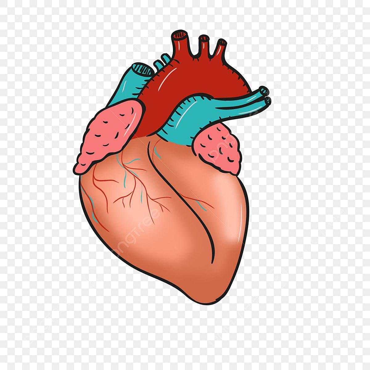 قلب أصفر قلب إبداعي قلب مرسوم باليد قلب كرتون رسم قلب الأصفر Png وملف Psd للتحميل مجانا
