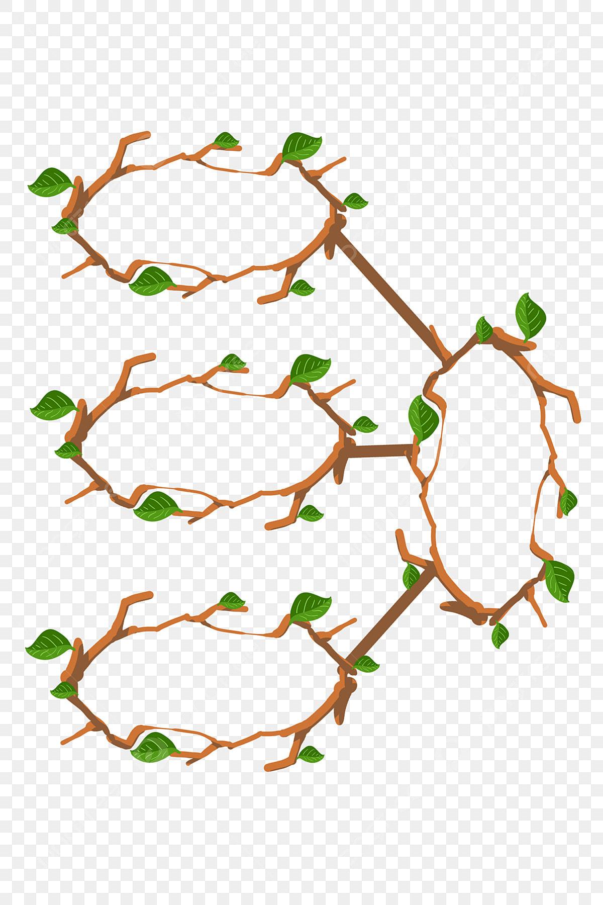 Tableau Des Plantes Branche D Arbre Circulaire Illustration
