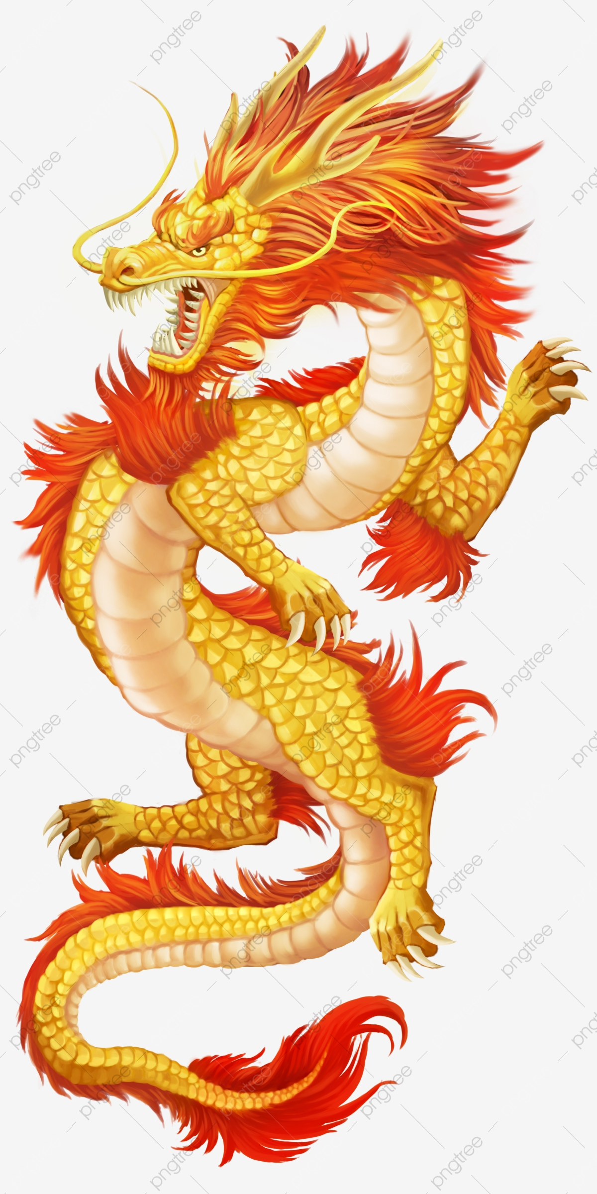Dragon Png Vector Psd And Clipart With Transparent Background