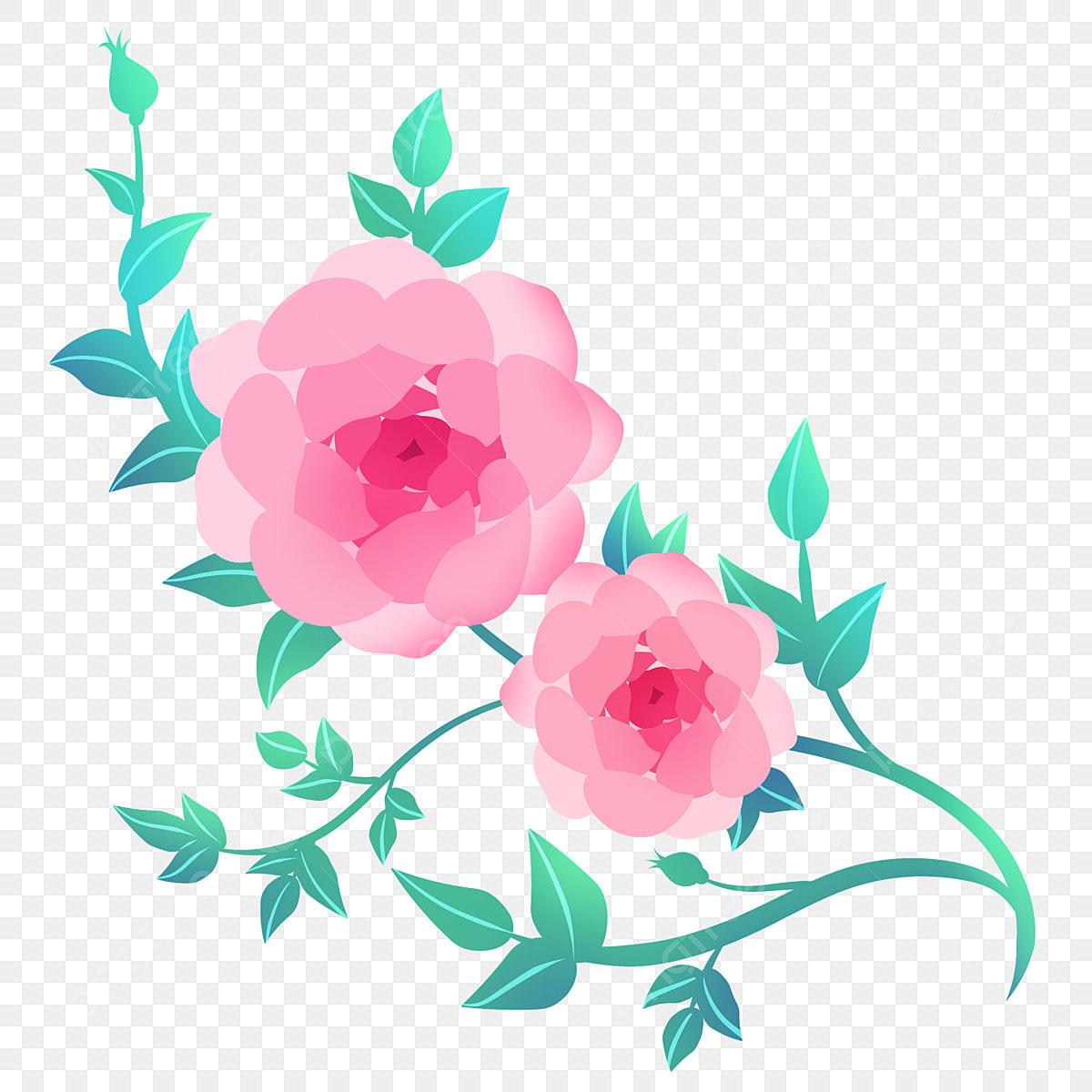 Pink Flower Flower Vine Illustration, Pink Flowers, Flowers