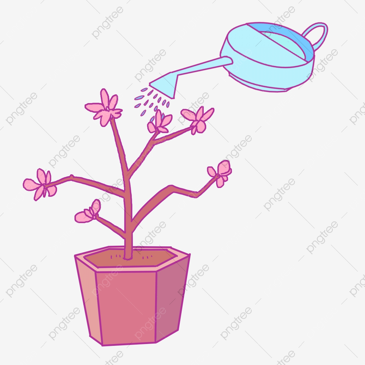 Arrosage Pour Plantes En Pot arrosage illustration pot de pura plante en pot, en, pot