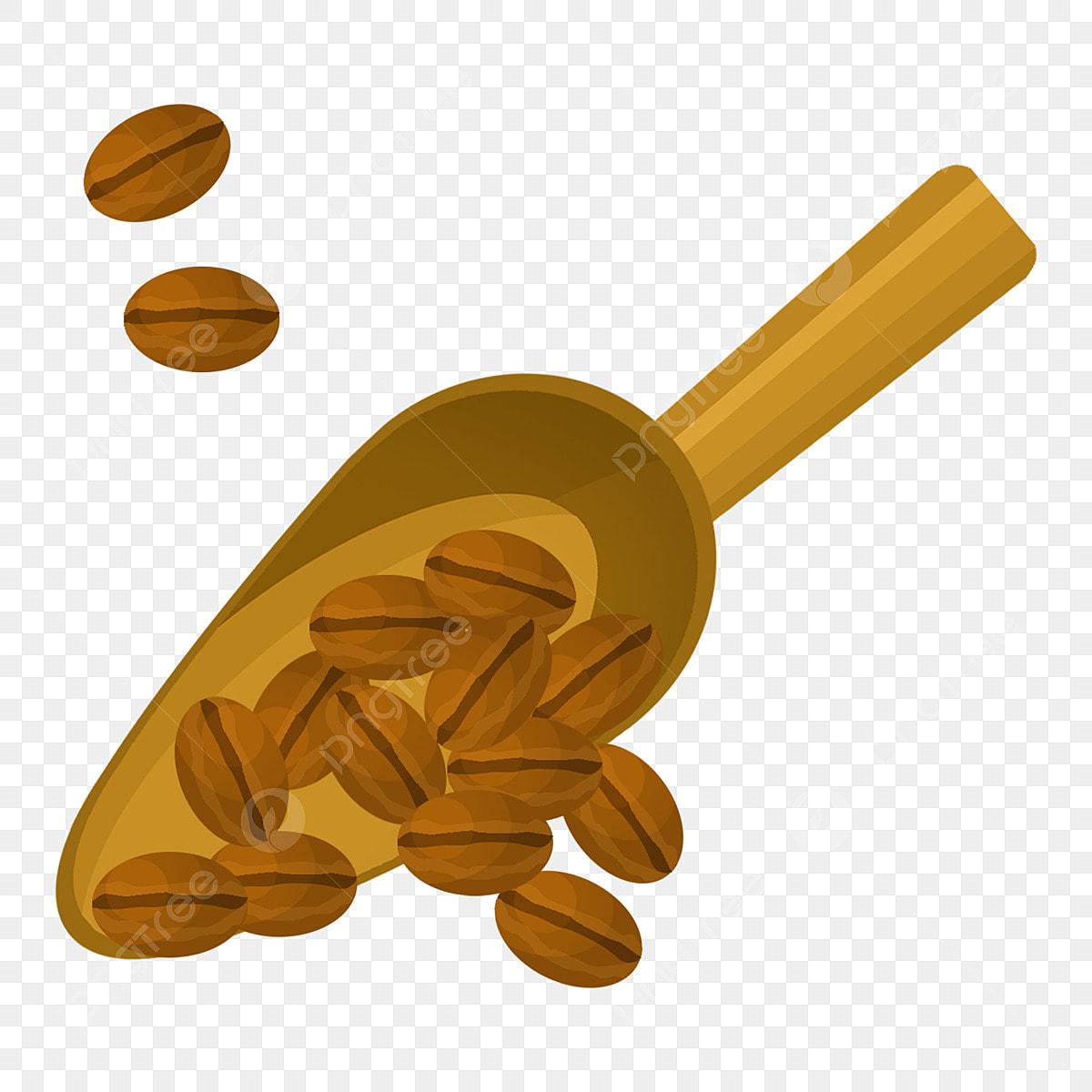 Gambar Biji Kopi Hitam Ilustrasi Biji Kopi Biji Kopi Ilustrasi Ilustrasi Kopi Kacang Ilustrasi Kacang Png Dan Psd Untuk Muat Turun Percuma
