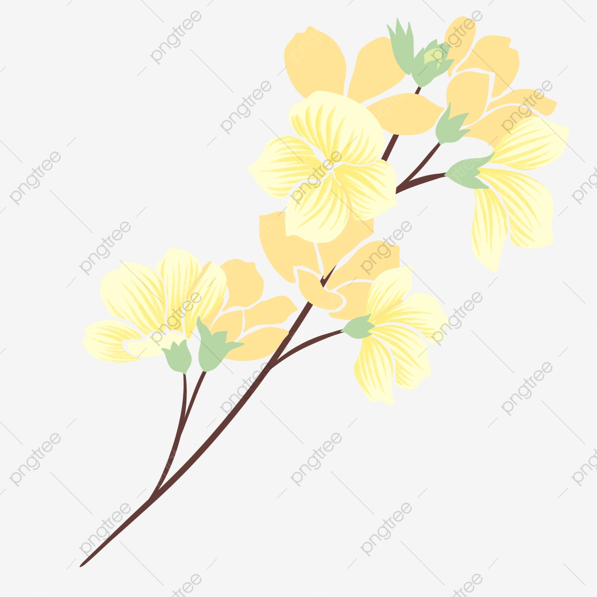 Spring Yellow Flowers Flowering Branches Illustration Spring