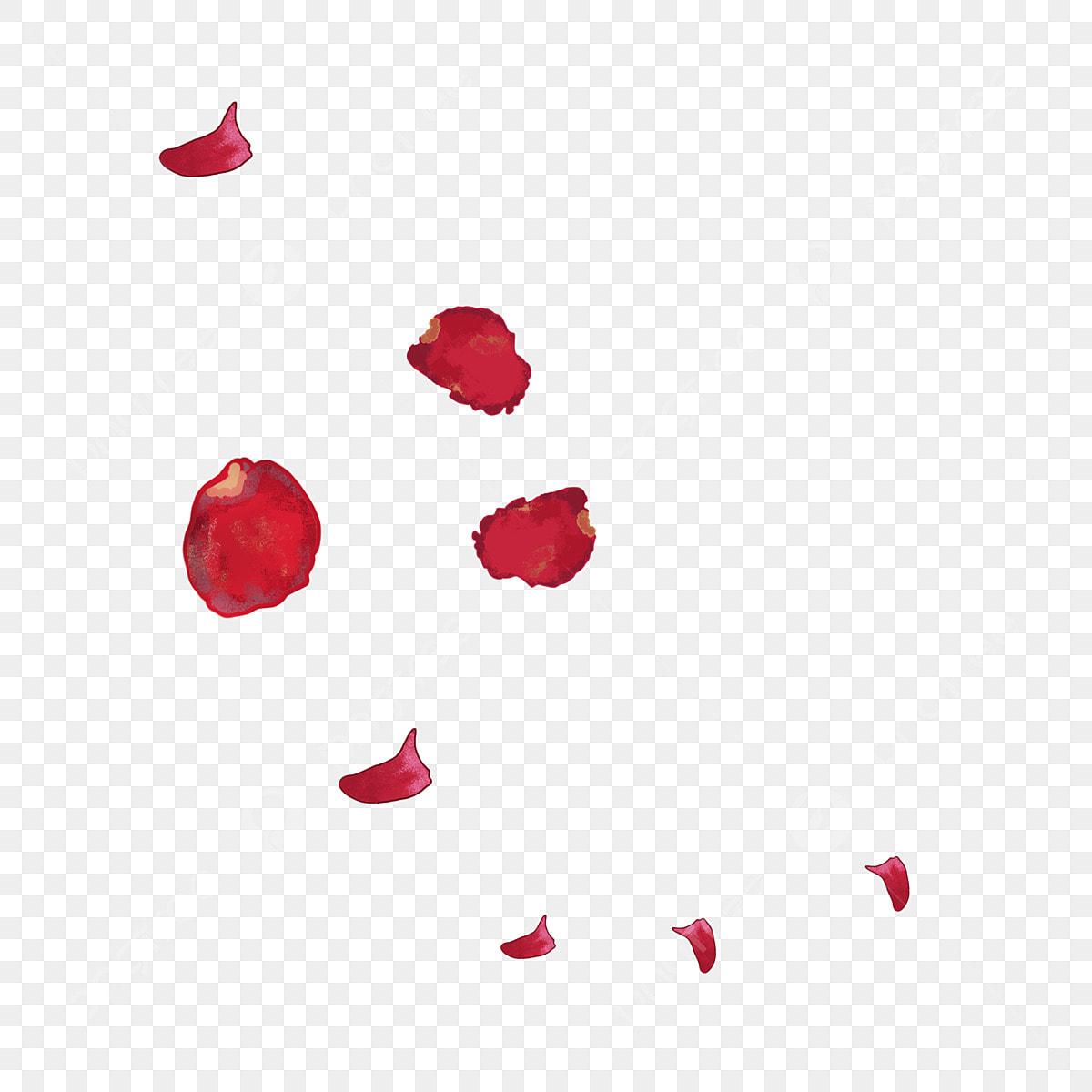 Bunga Merah Kelopak Terapung Bunga Cantik Bunga Jatuh Ilustrasi