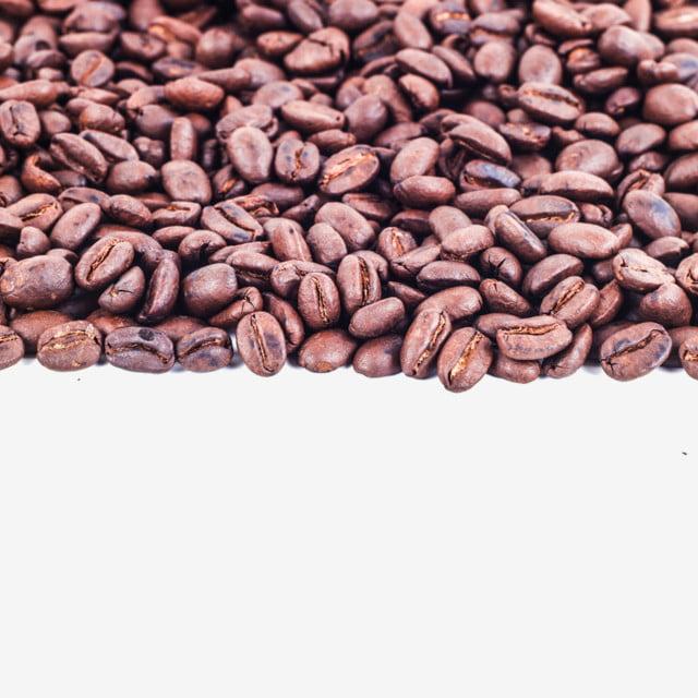 gambar bingkai oleh biji kopi kopi rangka kacang png dan psd untuk muat turun percuma gambar bingkai oleh biji kopi kopi