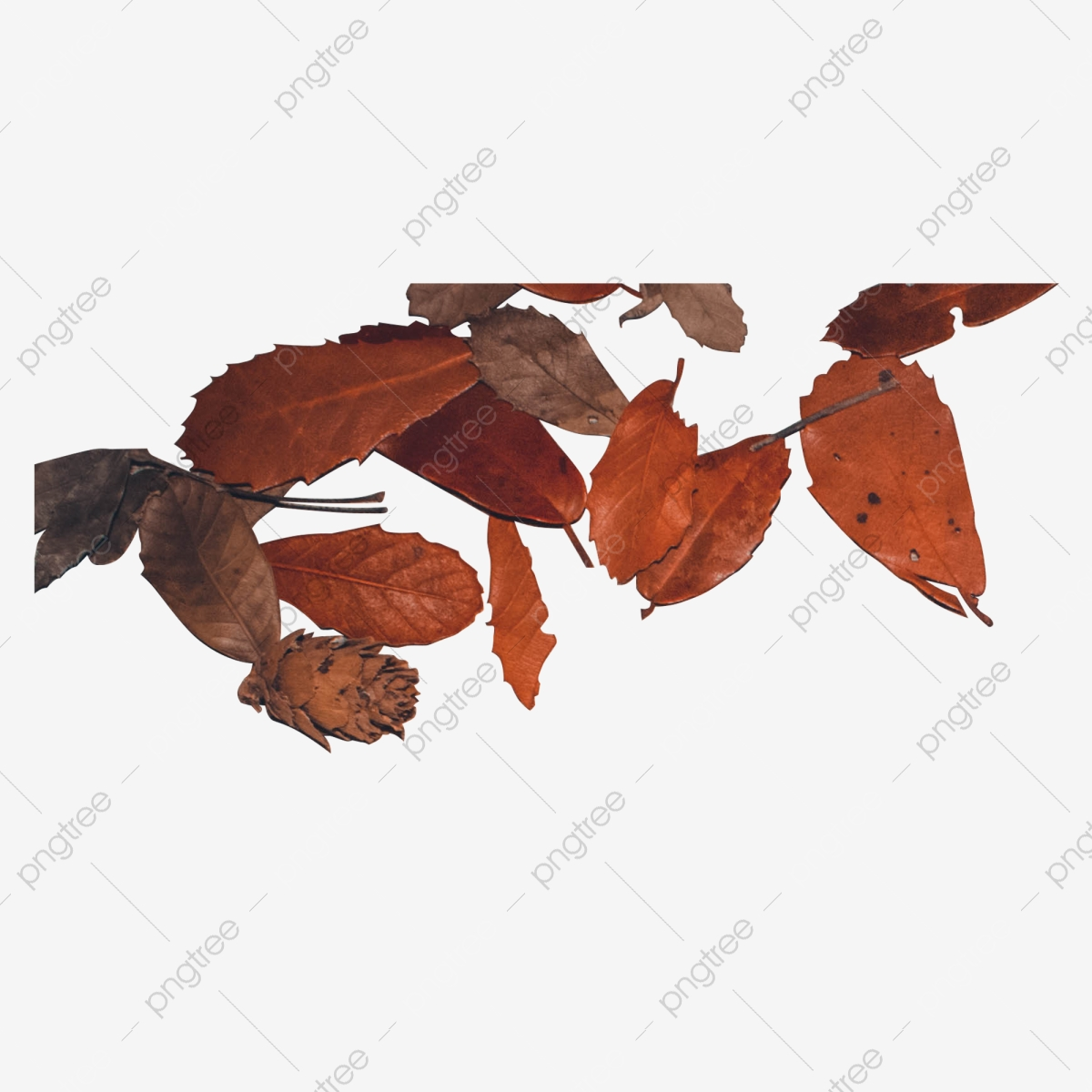 A Pile Of Red Falling Leaves Leaves Fallen Leaves Dead Leaves Png Transparent Clipart Image And Psd File For Free Download