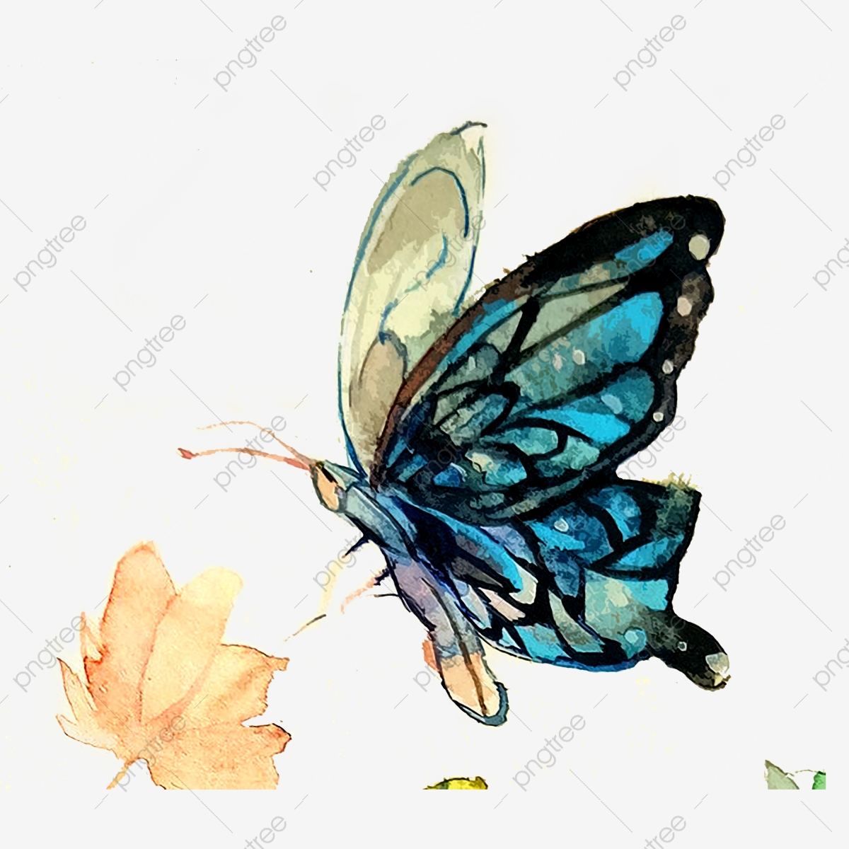 Butterfly Wings Transparent Blue Aesthetic Png Watercolor Ink Butterfly Colorful Png Transparent Clipart Image And Psd File For Free Download