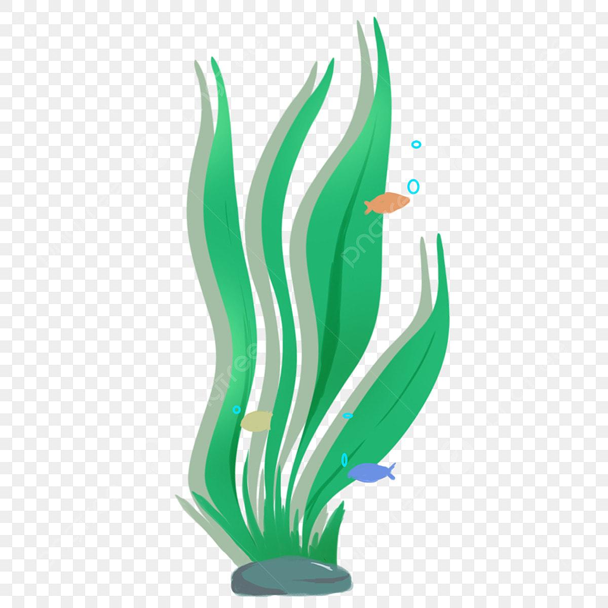 640 Koleksi Gambar Rumput Kartun Hitam Putih HD Terbaru