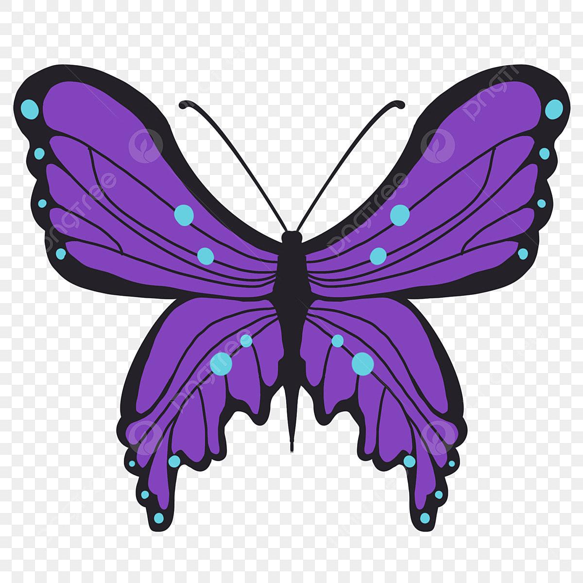 فراشة أرجوانية فراشة أرجوانية بقعة زرقاء حشرة بقعة زرقاء فراشة رسوم متحركة Png وملف Psd للتحميل مجانا