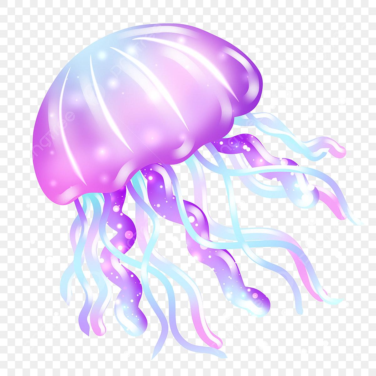 Beautiful Jellyfish Cartoon Illustration, Beautiful ...