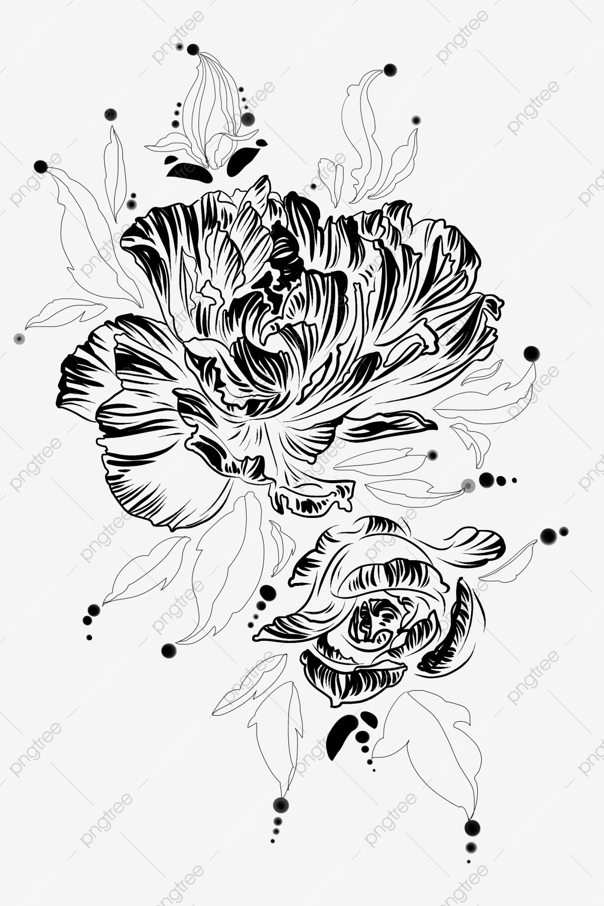 Belle Fleur Fleur Noir Et Blanc Dessin Au Trait Illustration