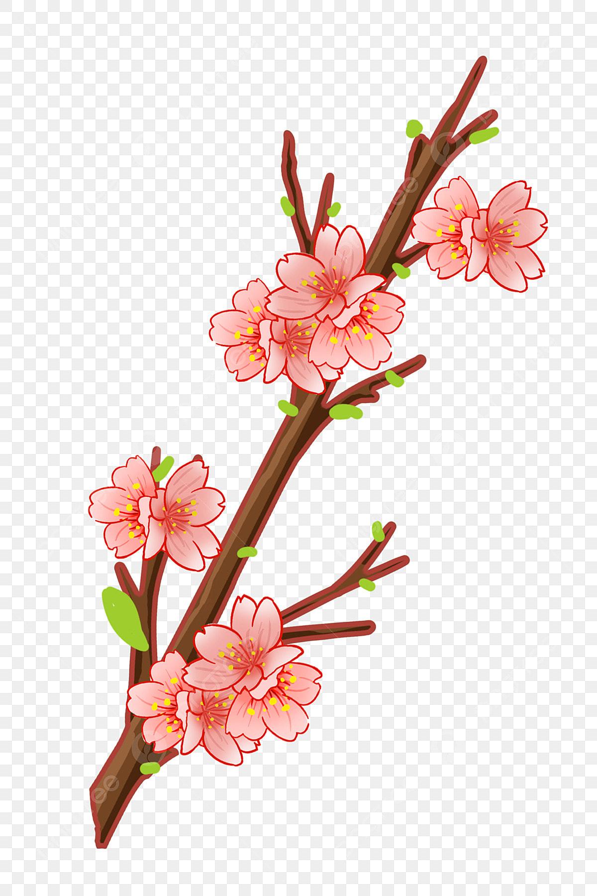 Décoration De Fleur De Cerisier Illustration De Dessin Animé