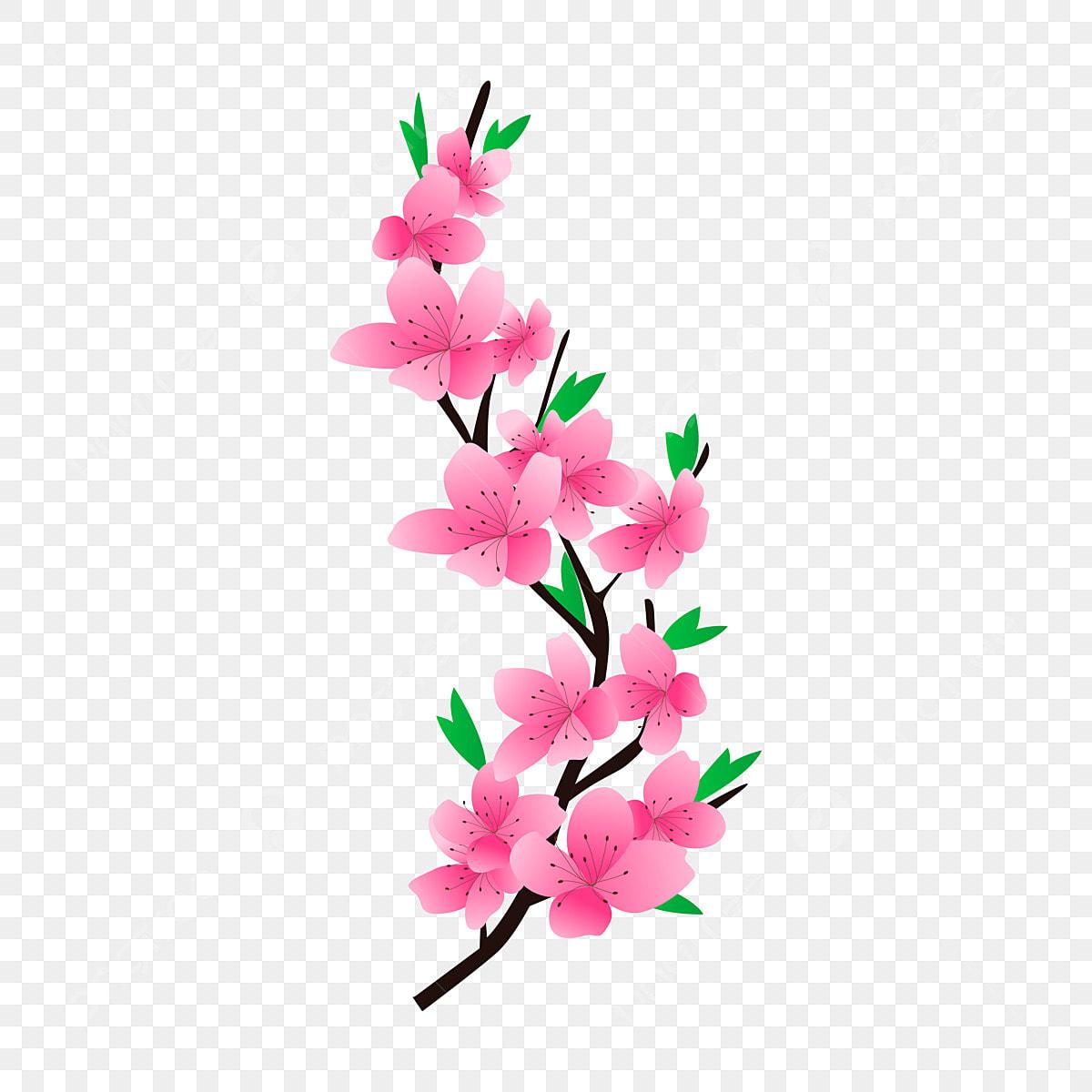 Dessin Anime Boucle Libre Fleur Rose Fleur Rose Bande Fleur De