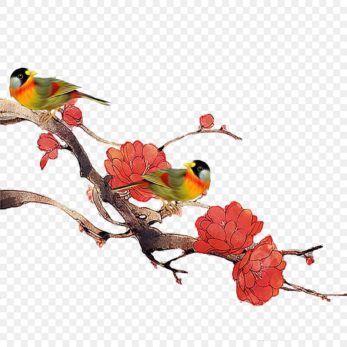 Dessin Anime Oiseau Fleurs Rouges Dessin Anime Oiseau Clipart