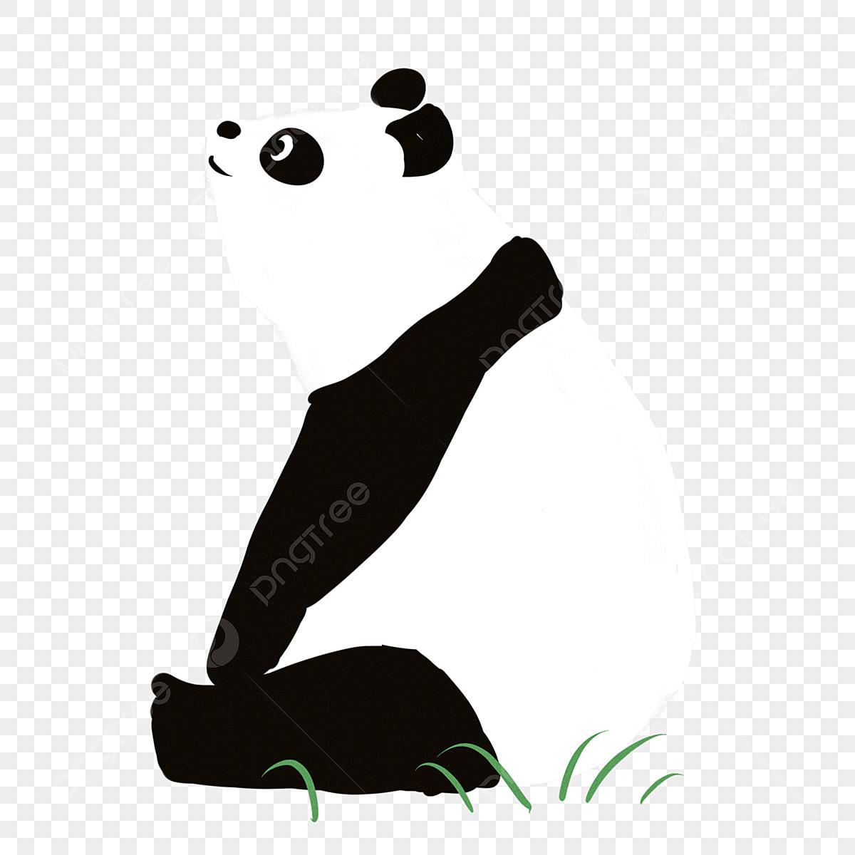 Panda Géant Dessin Animé Levant Les Yeux Vers Le Jour Du