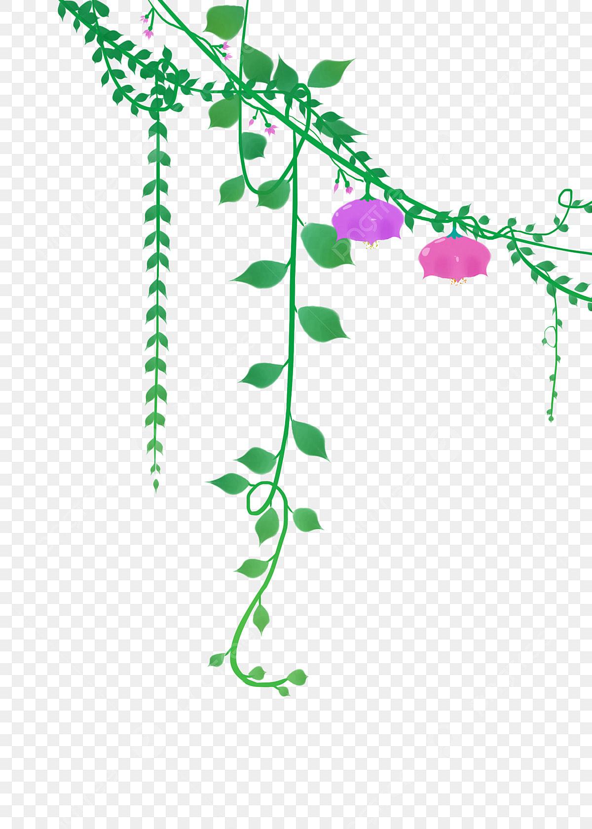 Vides Verdes Flores De Dibujos Animados Decoración De