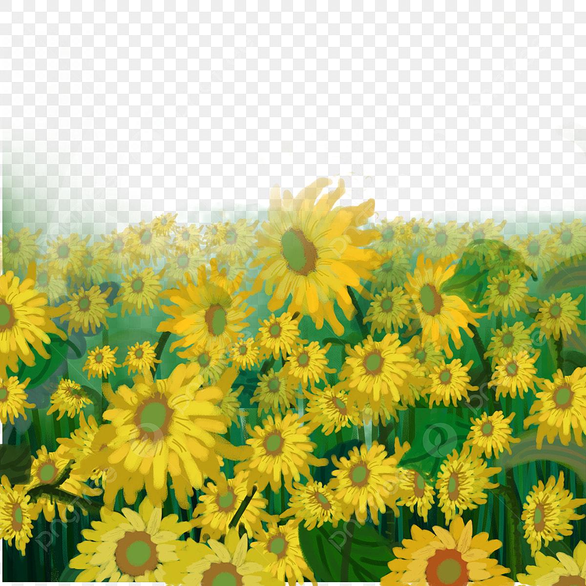 Unduh 84+ Gambar Bunga Matahari Kartun Gratis Terbaik