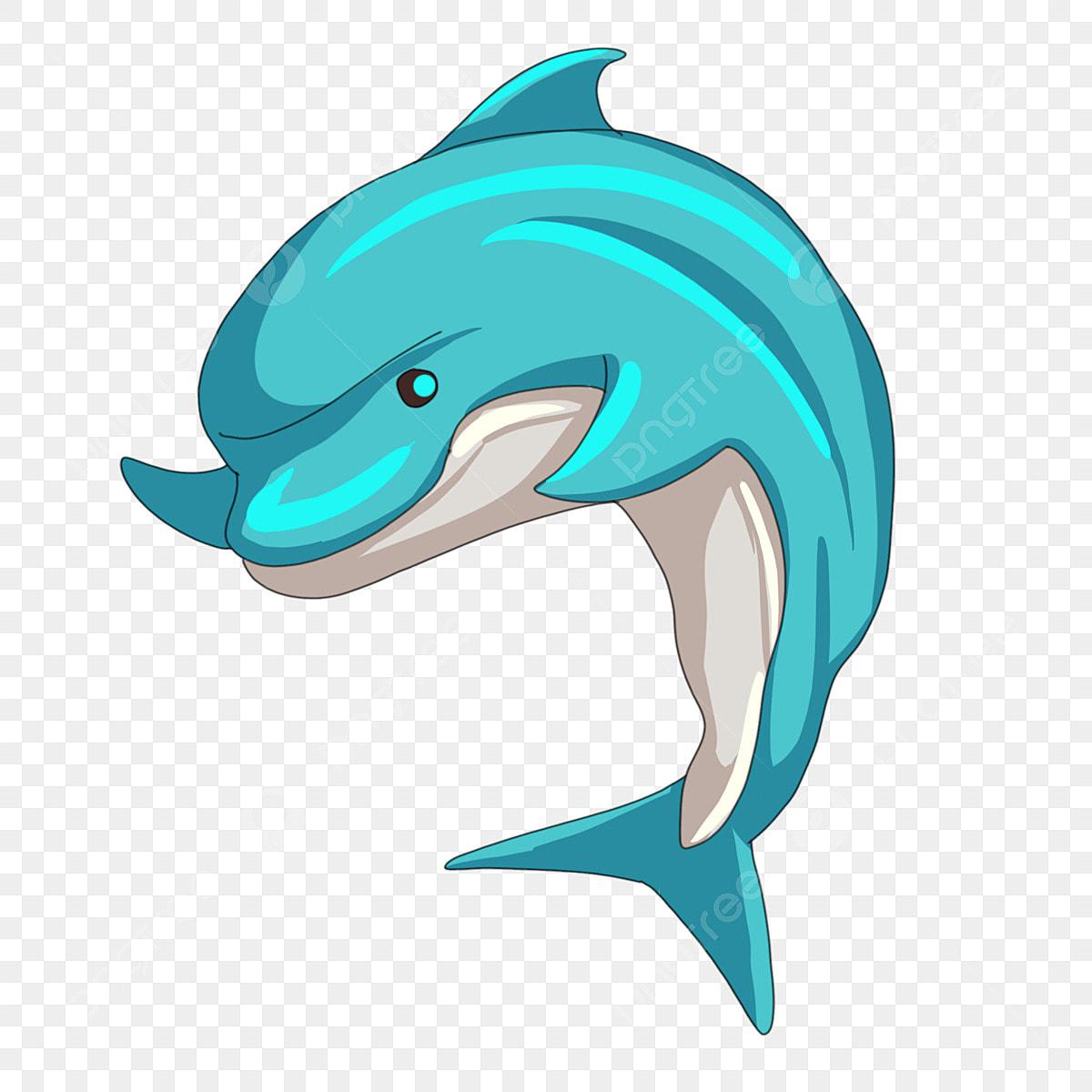 Gambar Lumba Lumba Haiwan Ikan Ilustrasi Kartun Lumba Lumba Laut Png Dan Psd Untuk Muat Turun Percuma