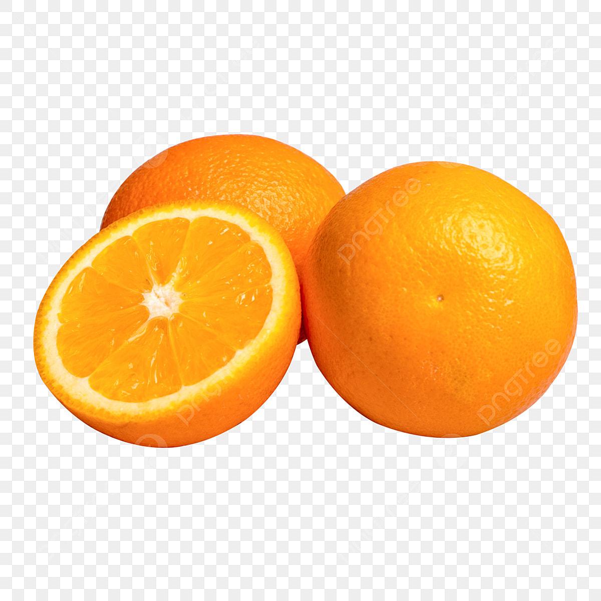 gambar jeruk png vektor psd dan clipart dengan latar belakang transparan untuk download gratis pngtree https id pngtree com freepng nutritious fruit orange 4672315 html