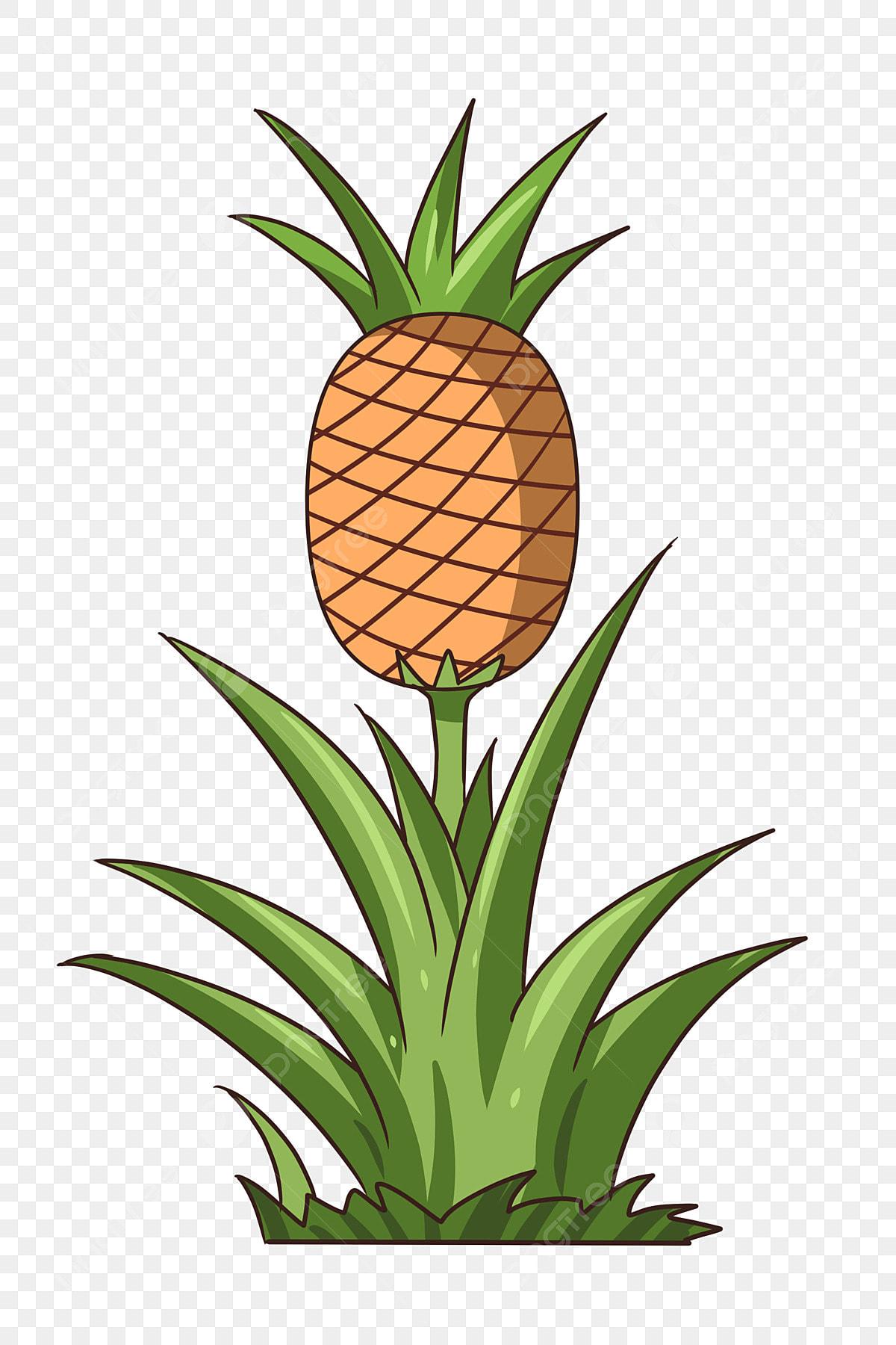 Pineapple Tree Cartoon Plant, Glass Tree, Plant, Fruit ...